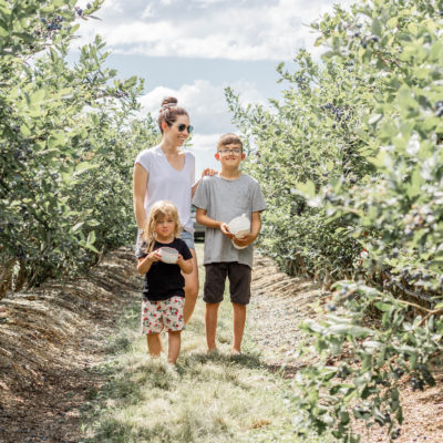 Things To Know Before You Take Your Kids Blueberry Picking!